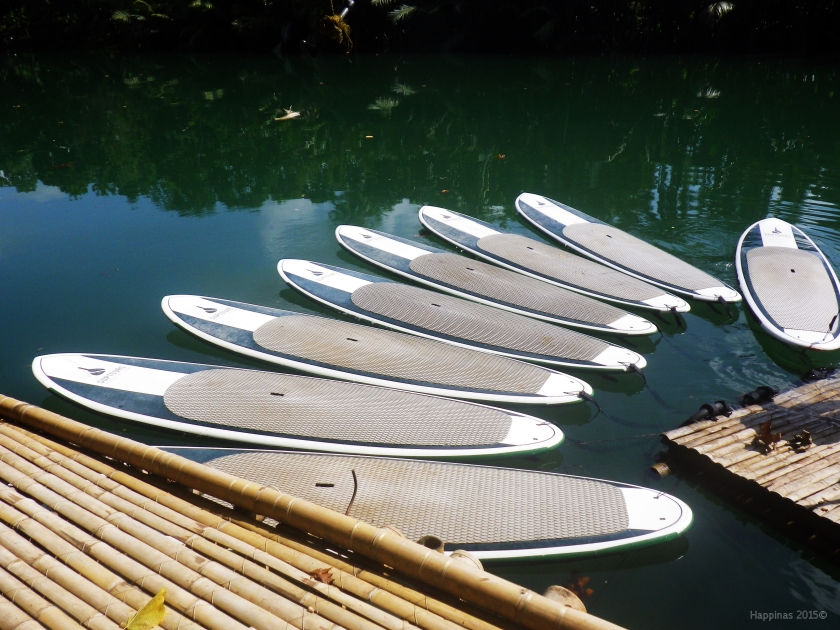 Paddle boards galore