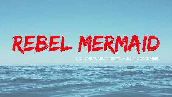 Rebel Mermaid